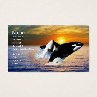 Wale am Sonnenuntergang Visitenkarte