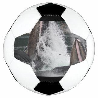 Wale Fußball