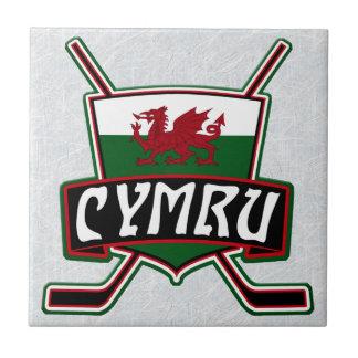 Waliser-Eis-Hockey-Flaggen-Keramik-Fliese, Wales Keramikfliese