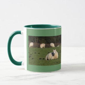 Waliser-Schafe Tasse