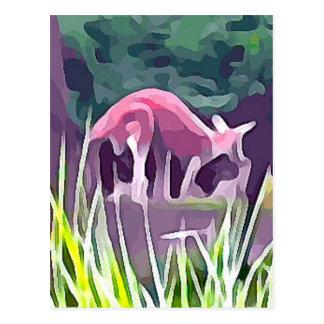 Wallaby Postkarte