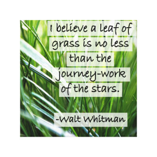 Walt Whitman Zitat-Blätter des Grases Leinwanddruck