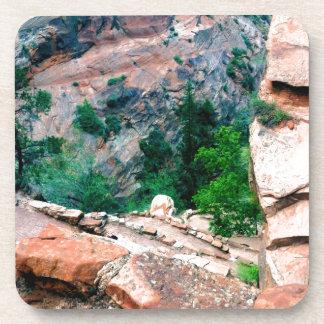 Walters Wiggles Zion Nationalpark Utah Getränkeuntersetzer