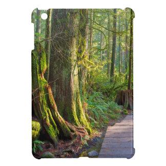 Wanderweg durch Wald im Lynn-Schlucht-Park iPad Mini Hülle