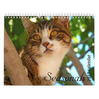 Wandkalender der Katzenkatzenkatzen 2017