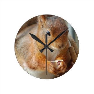 Wanduhr Squirrel ~ Écureuil ~ Eichhörnchen