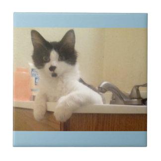 Wannen-Kätzchen Fliese