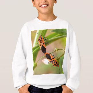 Wanzeninsekt   in der Natur Sweatshirt