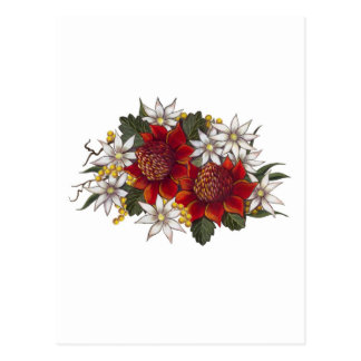 Warratha Flanell-Blume Postkarte