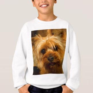 Wartezeit für Mamma-Liebe Yorkie Terrierhund Sweatshirt