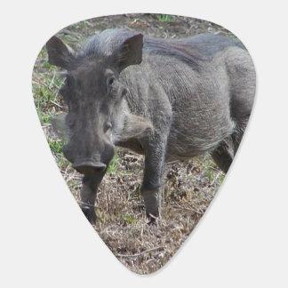 Warthog Plektrum
