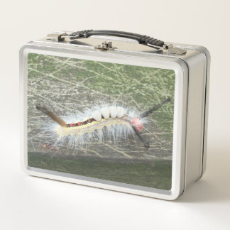 , was es Wanze ist Metall Lunch Box