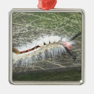 , was es Wanze ist Silbernes Ornament