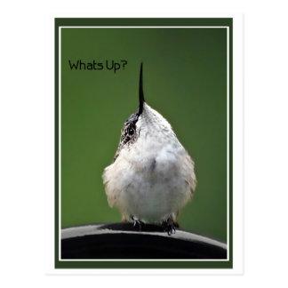 Was ist oben? Mit Text Postkarte