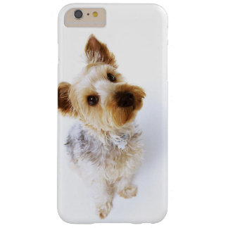 Was? L niedlicher Yorkshire-Terrier Barely There iPhone 6 Plus Hülle
