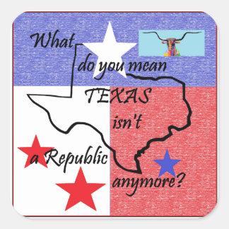Was Sie tun, ist gemeines Texas nicht eine Quadratischer Aufkleber