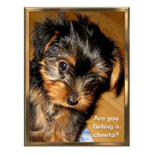 Was Sie versteckend? Kundengerechte Postkarte