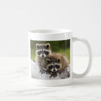 Waschbär-Babys Kaffeetasse