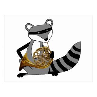 Waschbär, der das französische Horn spielt Postkarte
