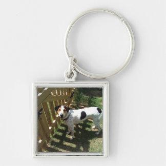 Waschbär-Jagdhund Silberfarbener Quadratischer Schlüsselanhänger