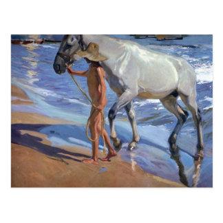 Waschen des Pferds Postkarte