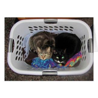 Wäscherei-Korb-Kätzchen Karte