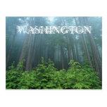 Washington-Staats-Postkarte