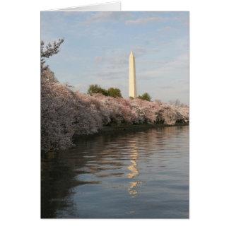 wasington Monument-Kirschblüte Karte