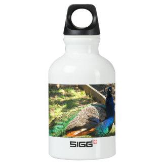 Wasser-Flasche des Pfau-wiederverwendbare Wasserflasche