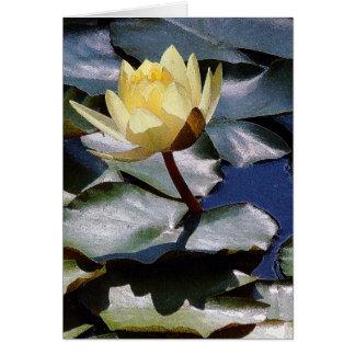 Wasser-Garten-Teich-Wasserlilie Lilypad Blumen mit Karte