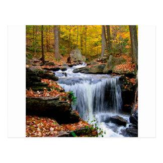 Wasser-Herbst-Fälle Postkarte