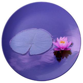 Wasser-Lilie an der Dämmerungs-Platte Porzellanteller