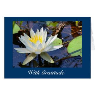 Wasser-Lilie danken Ihnen zu kardieren Karte