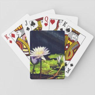 Wasser-Lilie im Korkenzieher-Sumpf Spielkarten