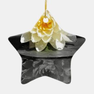 Wasser-Lilie Keramik Stern-Ornament