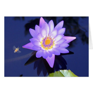 Wasser-Lilie mit Bienen-Geburtstags-Karte Karte