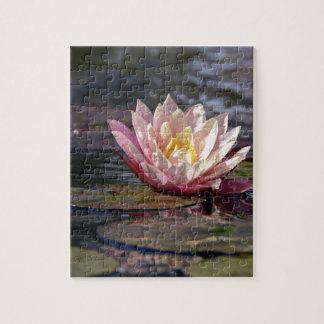 Wasser-Lilie Puzzle