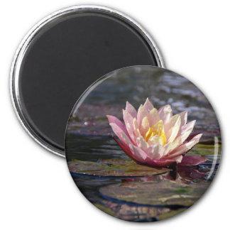 Wasser-Lilie Runder Magnet 5,7 Cm
