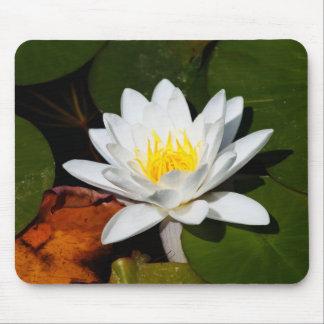 Wasser-Lilien-Mausunterlage Mousepad