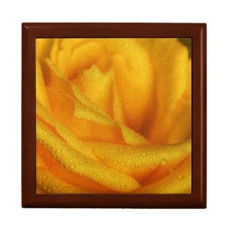 Wasser-Tröpfchen auf eleganter gelber Rose Schmuckschachtel