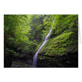 Wasserfall an Watkins Schlucht, NY Karte