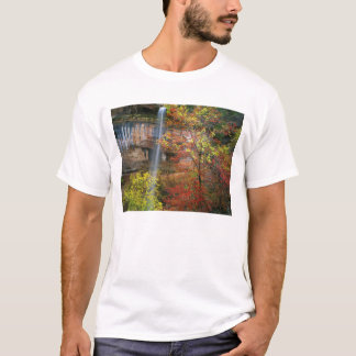Wasserfall, bigtooth Ahorn Acer T-Shirt