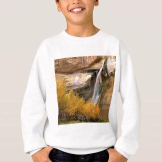 Wasserfall-Kalbgroßartiges Escalante-Monument Utah Sweatshirt