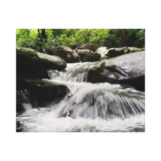 Wasserfall kaskadiert Great Smoky Mountains Leinwanddruck