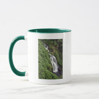 Wasserfall nahe Hilo, Hawaii Tasse