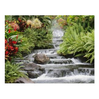 Wasserfall Postkarte