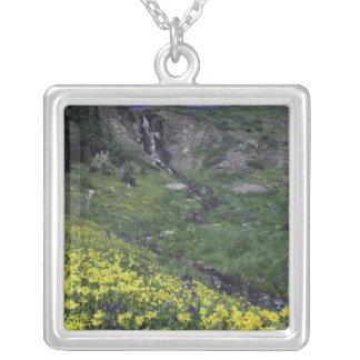 Wasserfall und Wildblumen in der alpinen Wiese, Versilberte Kette