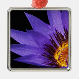 Wasserlilie Quadratisches Silberfarbenes Ornament