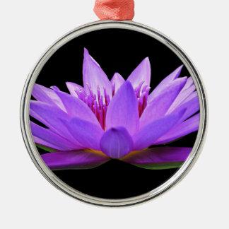 Wasserlilie Silbernes Ornament