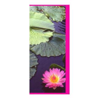 Wasserlilie Werbekarte
